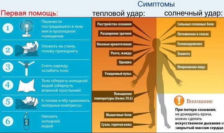 Симптомы солнечного удара у беременных 16